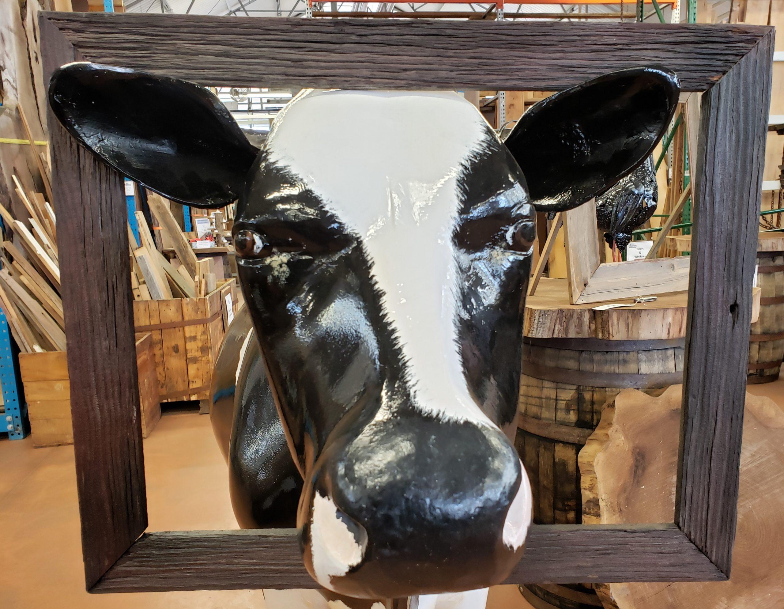 1. Cow
